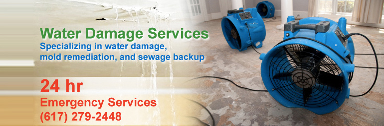 Water Damage Services : Water damage fire mold insurance billing vioclean