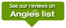 mold damage - Angies List reviews
