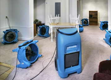 Carpet Cleaning MA